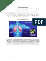 La Tuberculosis en El Perú