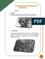 CONCENTRACION DE MINERALES.pdf