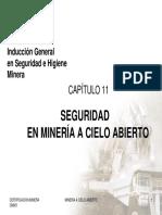 CM001 CAP11.-MINERA A CIELO ABIERTO.pdf