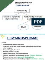 3-plantae-spermatophyta-apri.pptx