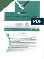 15_GUIA_DE_ACCIONES_QUE_SE_DESARROLLARAN_PARA_INICIAR_LA_INSTRUMENTACION_DE_LA_CRUZADA.pdf