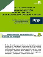 3.3  SISTEMA DE GESTION DE EXPOSICION A RUIDO.pdf