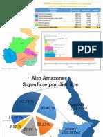 Alto Amazonas