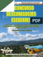 Bases de Econegocios Firma de Director Regional 2