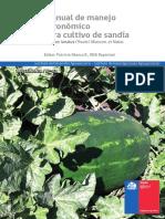 02 Manual Sandia