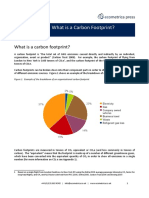 whatis_acarbonfootprint_summary.pdf