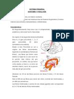 14979235-Sindrome-Piramidal-y-Extrapiramidal.pdf