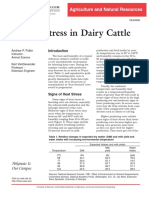 Heat Stress Indairy Cattle