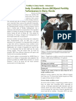 Part 9  Cow Body Condition Score (BCS)and Fertility  Performance in Dairy Herds Performance in Dairy Herd.pdf