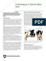 body-condition-scoring-as-a-tool-for-dairy-herd-management.pdf
