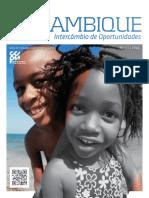 GESTÃO de RISCOS AMBIENTAIS Nos Investimentos Em Moçambique