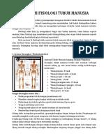Anatomi Fisiologi Tubuh Manusia Dan ARTERI JANTUNG