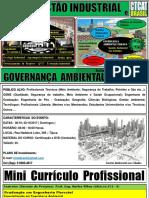 Curso Gestão Industrial  e Governança Ambiental Urbana.pdf