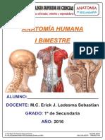 Material PCSC - Anatomía 1 Sec Primer Bimestre