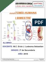 Material PCSC - Anatomía 3 Sec Primer Bimestre