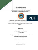 TESIS.II009P60.pdf