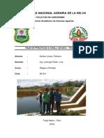 Informe de Viaje a Tocache