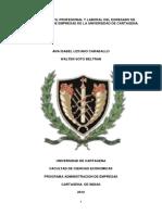 Analisis Del Perfil Profesional y Laboral Del Egresado de Administracion de Empresas de La Udc