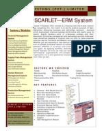 ERM System
