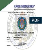 Proyecto Produccion Industrial de Frutas Abrillantadas