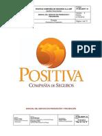Manual Servicio en PyP
