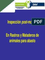 inspeccion2.pdf