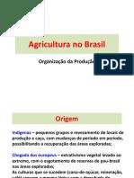 07. Agricultura No Brasil.2017