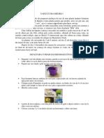 Guia de Hops Brasil 3-2-2016.pdf