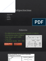 Adipocitocinas