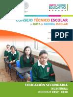 Faseintensivacte2017 2018 Secundaria
