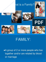 Types of Families Ppt