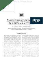 Mordeduras y Picaduras de Animales Terrestres