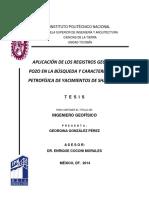 Aplicación de Los Registros Geofísicos de Pozo en La Busqueda y Caracterización Petrofísica de Yacimientos de Shale Gas(1)