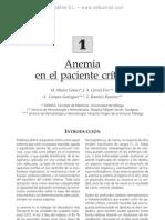 Anemia en el paciente cri¦ütico