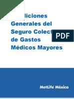 Condiciones Generales GMM