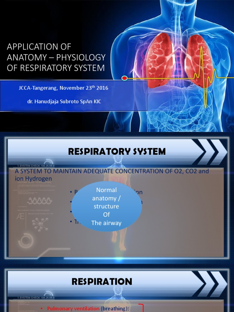 1 - Anatomy and Physiology of Airways | Respiratory Tract