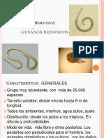 Nematodos.pdf