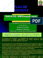 Proyecto Cuyes I