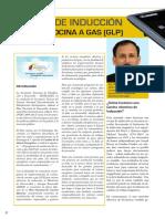 Cocina de Inducción Versus Cocina a Gas (GLP)_unlocked