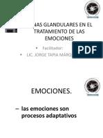 5 Emociones Chakras 2013