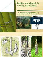 PPT ON BAMBOO