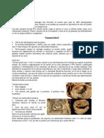 2ª Clase Cardiología[1]. Valvulopatías Mitrales