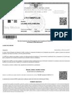 AIML751119MSPVLL08 (1)