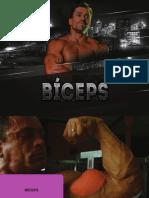 eBook - Biceps