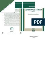 Derechodefamilia Tomoireneramospazos 141117151416 Conversion Gate02