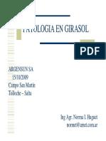 Patologia en Girasol - Norma Hughet