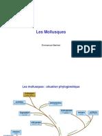 EB_Mollusques.ppt