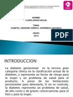 08.- Expo Diabetes Gestacional