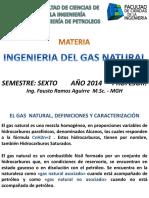 Gas Natural Definiciones, Caracterizacion