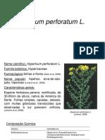 Hypericum perforatum Farmacognosia